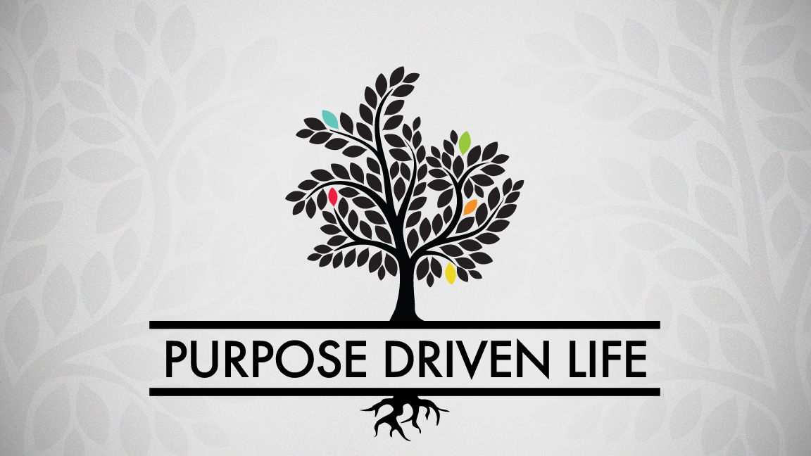 THE PURPOSE DRIVEN LIFE What on Earth Am I Here For ~ Rick Warren 2002, HC/DJ